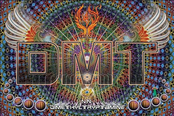 Qu'est-ce que le DMT ? | dmt