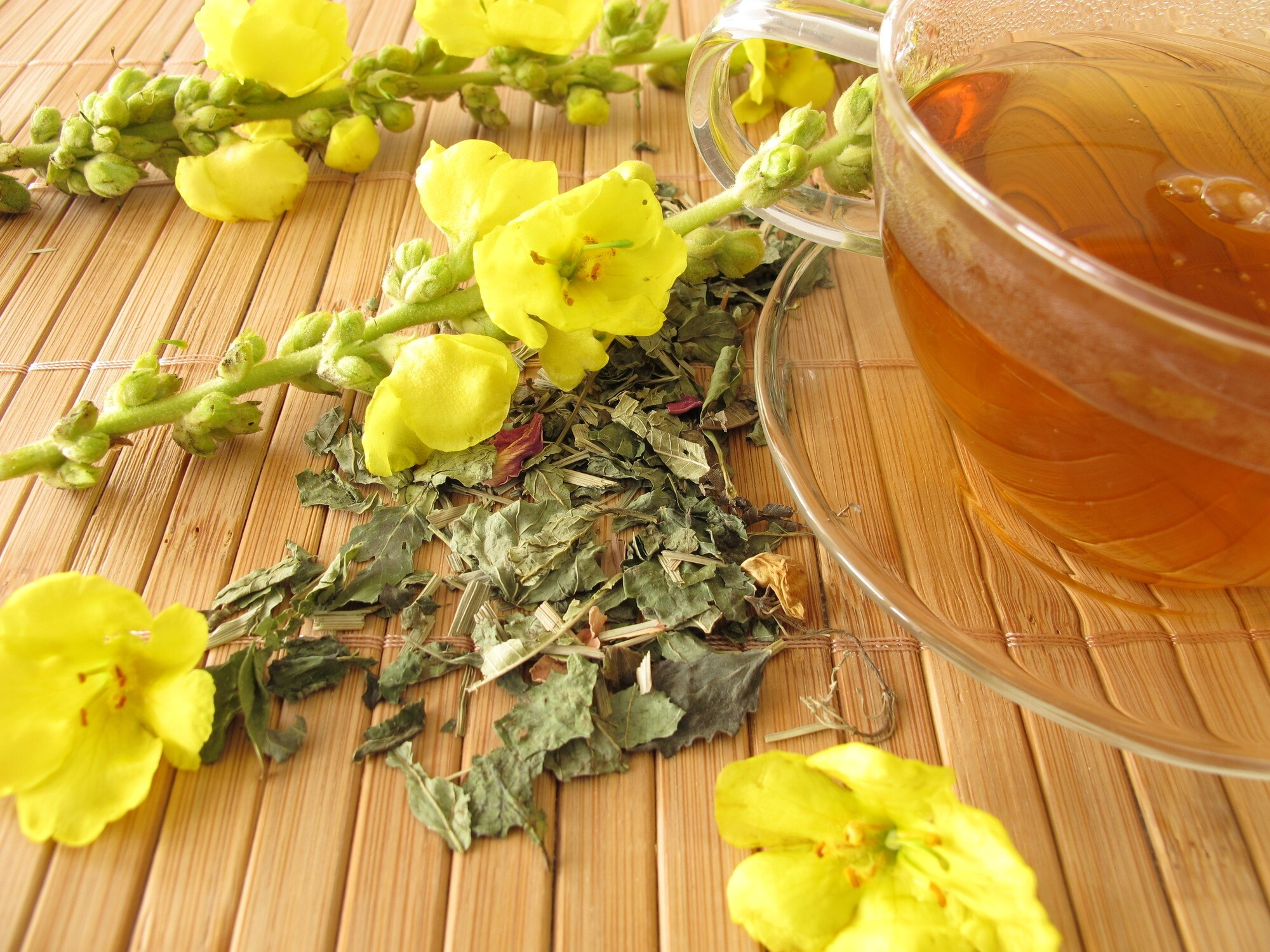 What Herbs Can You Smoke? | tea with mullein flowers