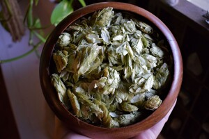 hops_dried